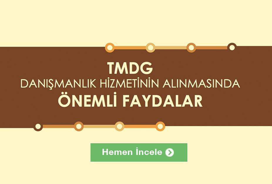 tmgd-blog-ici
